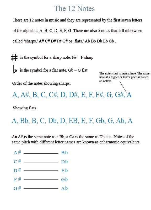 Guitar Manual info 00 the 12 notes (alt)